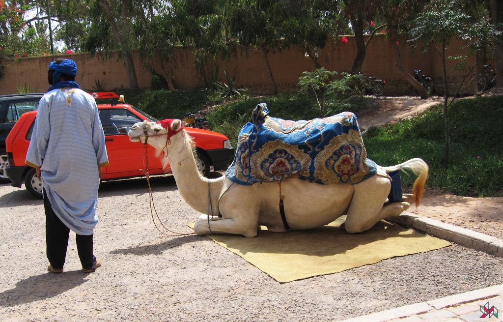 Maroc (34)