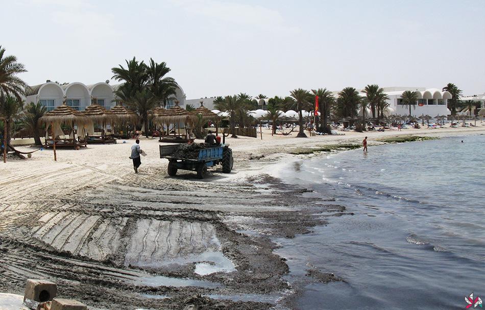 Tunisie-2007 (1)