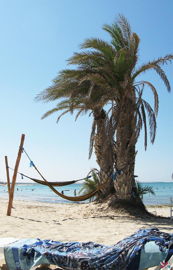 Tunisie-2007 (2)