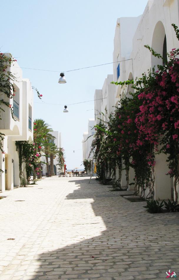 Tunisie-2007 (5)