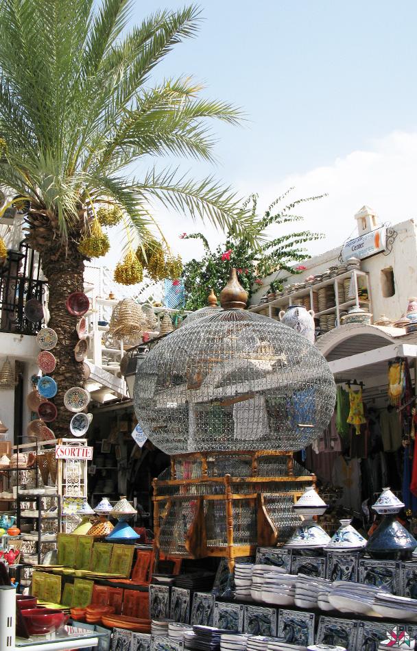 Tunisie-2007 (6)