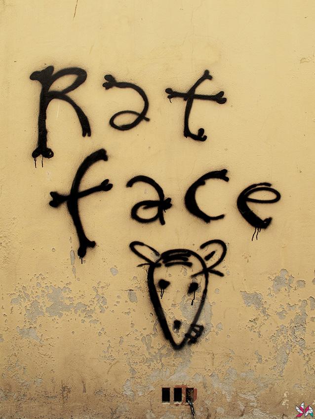 face-de-rat