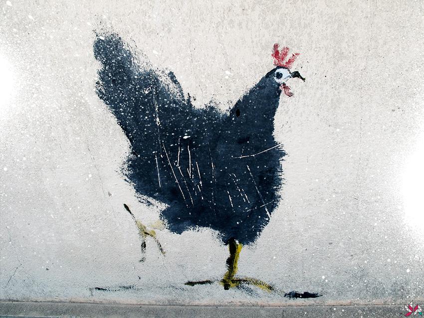 poulet-1